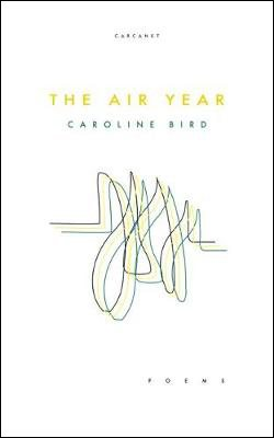 The Air Year (Paperback)