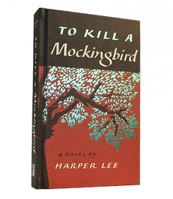 how to kill a mockingbird synopsis