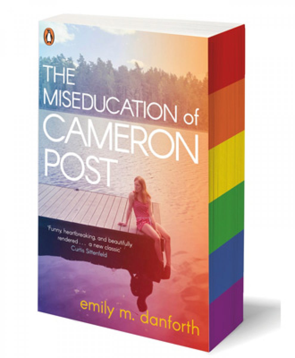 Image result for miseducation of cameron post rainbow edges