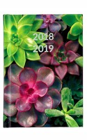 Waterstones Signature Succulents Pocket Diary 2018-2019