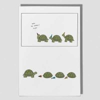 Tortoise Birthday Surprise