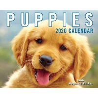 Puppies 2020 Mini Day-to-Day Calendar