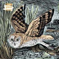 Adult Jigsaw Puzzle Angela Harding: Marsh Owl