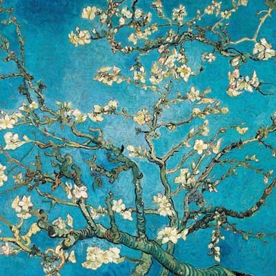 Almond Branches in Bloom, Van Gogh