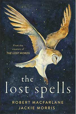 The Lost Spells (Hardback)