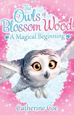 The Owls of Blossom Wood: A Magical Beginning - Blossom Wood (Paperback)