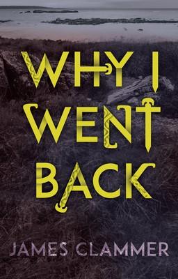 Why I Went Back (Paperback)
