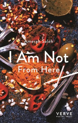I Am Not From Here (Paperback)