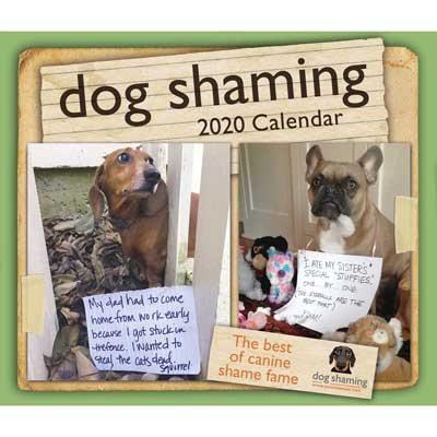 Dog Shaming 2020 Day-to-Day Calendar (Calendar)