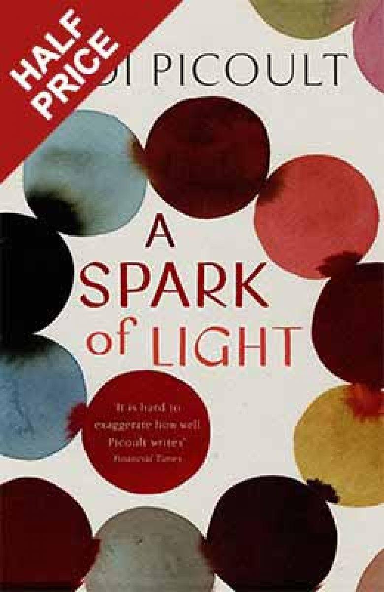 A Spark of Light (Hardback)