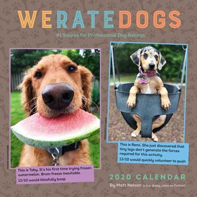 Weratedogs 2020 Square Wall Calendar (Calendar)