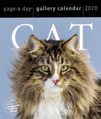 Cat Page-A-Day Gallery Calendar 2020 (Calendar)