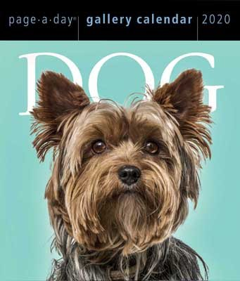 Dog Page-A-Day Gallery Calendar 2020 (Calendar)