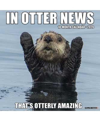 In Otter News 2020 Wall Calendar (Calendar)